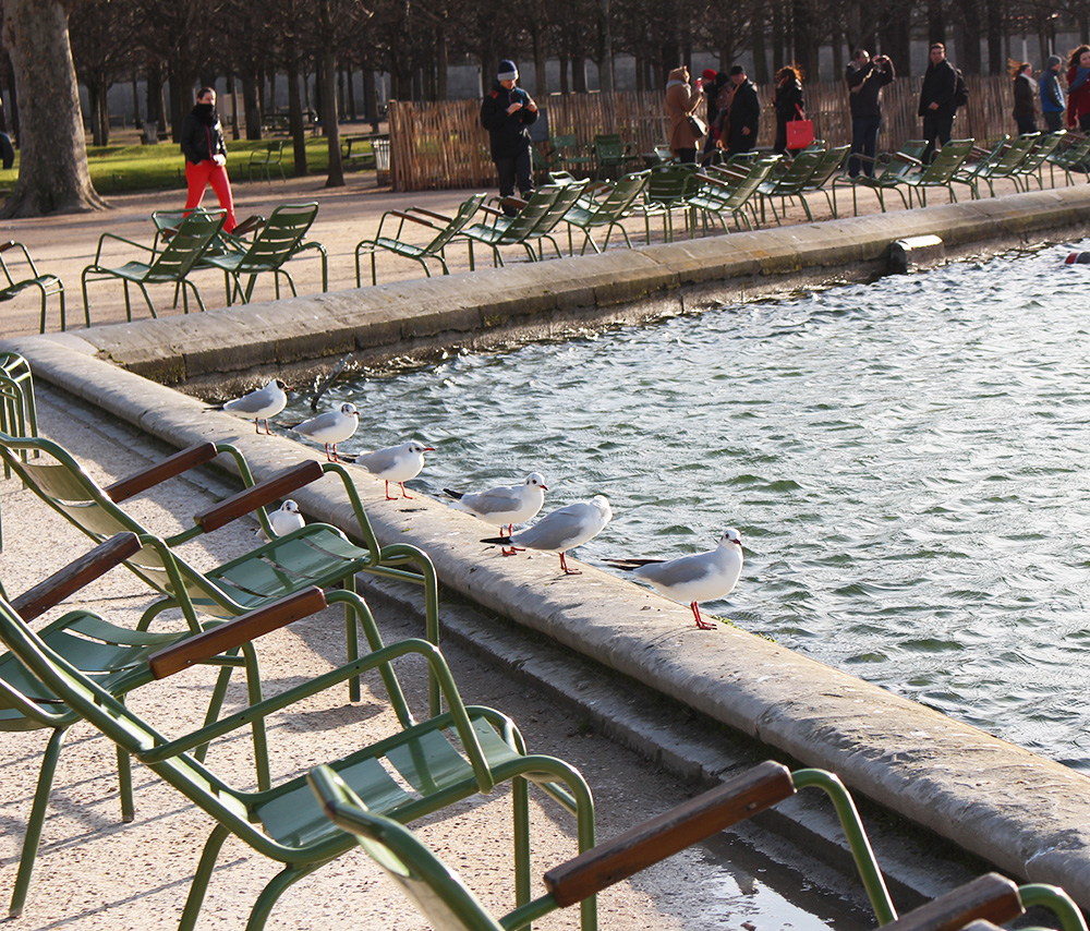 Tuileries winter 1